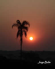 Crepúsculo 859 (Jorge Belim) Tags: pordosol entardecer crepúsculo preferida fimdodia canoneos50d