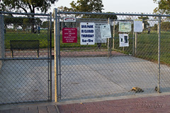 Arbor Dog Park Seal Beach
