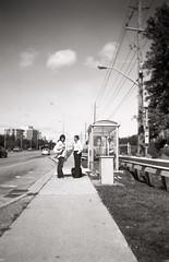 Bus Stop, Bus Stop