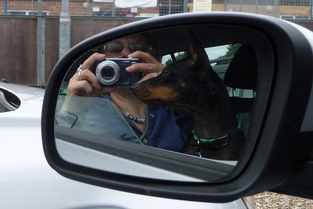 In the driving mirror