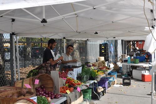 red hook community farm brooklyn ny