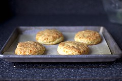 sour cream and cheddar shortcakes