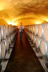 Louis Jadot Cellars, Burgundy