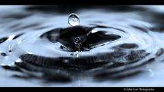 bluedrip (John Liot) Tags: abstract colour macro home water sink flash elements drips 60mm splash liquid canon550d leoface johnliot