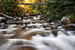 Alona Bay Creek (Billy Wilson Photography) Tags: autumn ontario canada motion cold fall nature water leaves rock digital creek canon river outdoors eos rebel moss movement rocks whitewater stream colours power action kitlens fast environmental environment lichen colourful xs current algoma montrealriver alonabay extravegant carniferous billywilsonphotography alonabaycreek