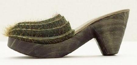 кактусовые туфли