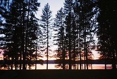Idaho Sunset (T-Terror) Tags: trees sunset lake film analog idaho olympusxa mccall fzuiko35mmf28 walgreens200