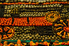 Pumpkin display. (Susan SRS) Tags: uk england orange green canon pumpkins vegetable gb slindon image6637 slindonpumpkinfestival