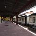 El Transcantabrico - Train in Ferrol, Der Zug in Ferrol