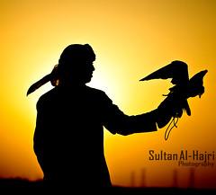 ([ Sultan Al-Hajri ]) Tags: falcon sultan  qatar qtr          alhajri  qtri rzh