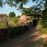 Colchester ZOO thumbnail
