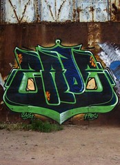 Zade (COLOR IMPOSIBLE CREW) Tags: chile bomb painters 2010 zade quilpue fros belloto