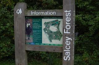Salcey forest car Park