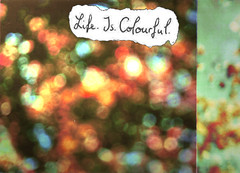 Life. Is. Colourful. (TinaCathou) Tags: life autumn color colour colorful dof bokeh herbst colourful bunt