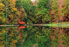 Morning on Dogwood Lake (rsteup) Tags: autumn fall nature reflections october indiana panasoniczs3 fwfg