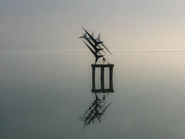 Frecce-T