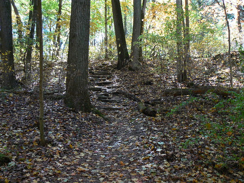 Clifty Falls State Park Reviews Tips Amp Activities Park