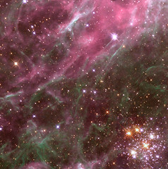 Stars in the Tarantula Nebula (NASA, Hubble, Aura, 04/01/99) (NASA's Marshall Space Flight Center) Tags: star nasa supernova breastcancer aura thinkpink redsupergiant hubblespacetelescope largemagellaniccloud tarantulanebula hodge301