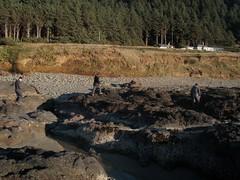 Hikey Hikey (dandlymambly) Tags: ocean autumn fall beach robin oregon coast october hiking stephen daphne tidepools tidal 2010