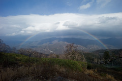 Unexpected rainbow! (RangefinderNotDead) Tags: leica f4 m9 wate trielmar 161821mm