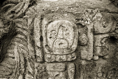 Copn 016 Honduras (duque molguero) Tags: blackandwhite bw art blancoynegro architecture arquitectura ancient rainforest ruins king arte maya selva honduras bn mayanruins jungle ruinas scanned rey civilization duotone archeology reyes clasico prehispanic arqueologia copn jungla duotono mayab arqueologica prehispanico civilizacin arqueologico mundomaya glifo glifos