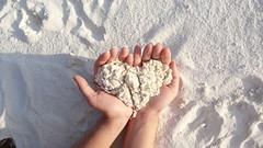 (maddyyu) Tags: beach shangrila maldives  villingili