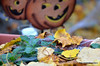 Halloween (Rafakoy) Tags: city newyork color colour halloween colors leaves season pumpkin focus colours image bokeh images pointofview queens sample woodside afsnikkor18105mmvr nikond7000