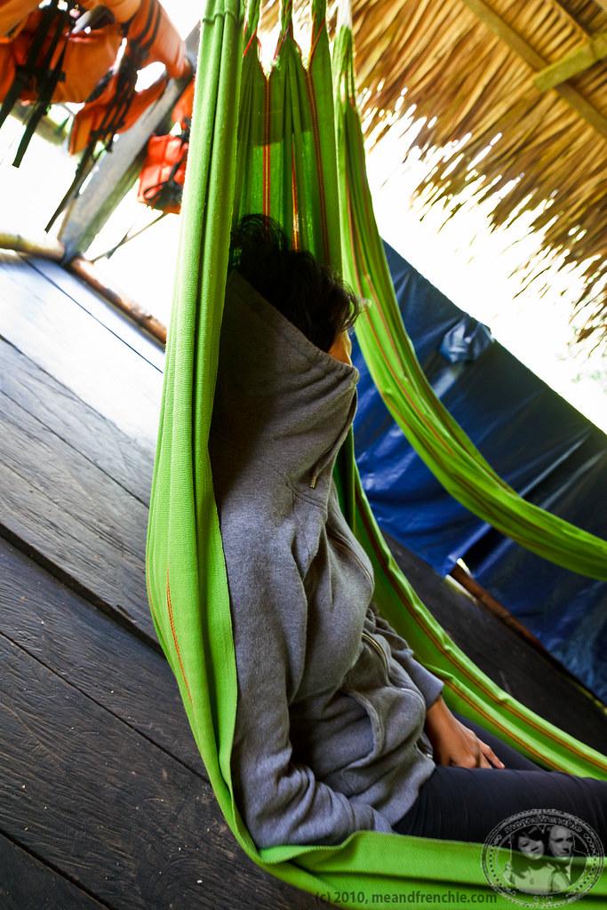 nap time for muimui  meandfrenchie  tags  ecuador amazon rainforest nap jungle hammock cuyabeno the world u0027s best photos of amazon and nickylodge   flickr hive mind  rh   hiveminer