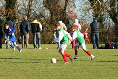 20101113_U11_Wayside_v_Celbridge_2441 (Paul-Allen) Tags: november football soccer fc 2010 1011 wayside kilternan celbridge