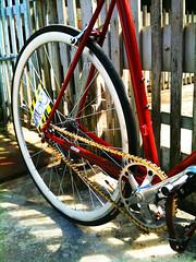 Maurizio Italian Bike (   synthetic happiness   ) Tags: morning red bike speed ride gear single fixed maurizio