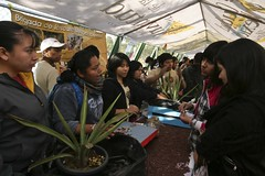 (Javier Hidalgo) Tags: mxico df prepa 4 8 gdf medio global jovenes ambiente chavos juventud chavas fuerza entusiasmo injuve calentamiento prepasi trabajoencomuidad