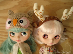 miss owl and luna fawn