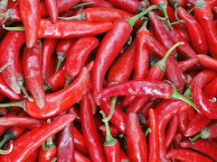 10 24 Day 10 14 (Mark Baker.) Tags: street red photo baker market mark korea photograph seoul peppers 2010 trader picsmark