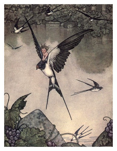 010-Tommelise-Hans Andersen's fairy tales (1913)- William Heath Robinson