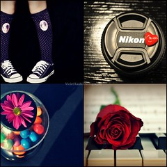 Clich Saturday Collage (Violet Kashi) Tags: flowers socks nikon keyboard dof heart piano gums daisy chucks allstars hcs clichsaturday