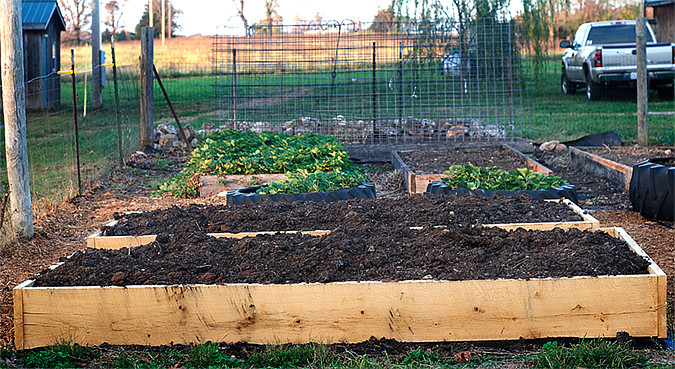 raised beds complete
