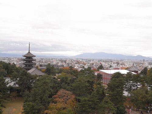 奈良県庁屋上展望台-11