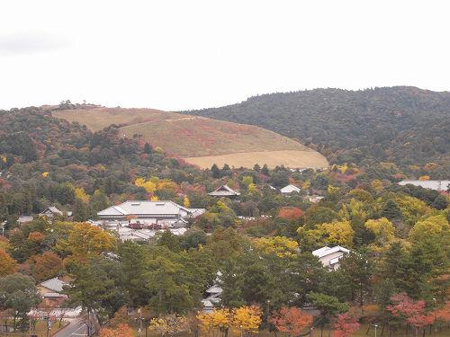 奈良県庁屋上展望台-04