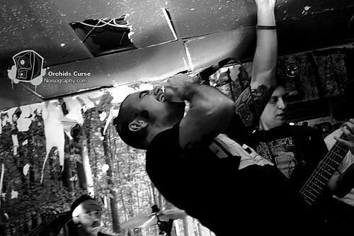 Orchids Curse - Nov. 19th 2010 - Gus' 09