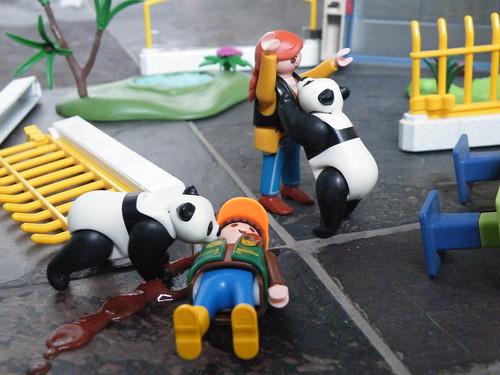 Day #170 When Pandas Go Bad