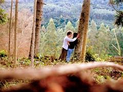 (@lluaraQ) Tags: love amor crepusculo paixão floresta namorados destino