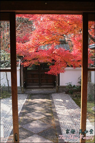京都 真如堂