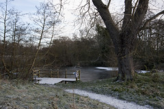 River Arrow Nature Reserve (susan yeomans) Tags: november england snow landscape warwickshire alcester riverarrow 40d riverarrownaturereserve