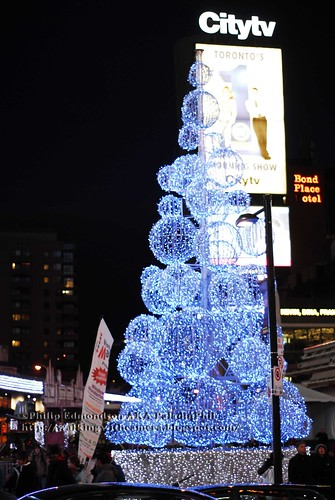 Dundas Square Christmas Tree
