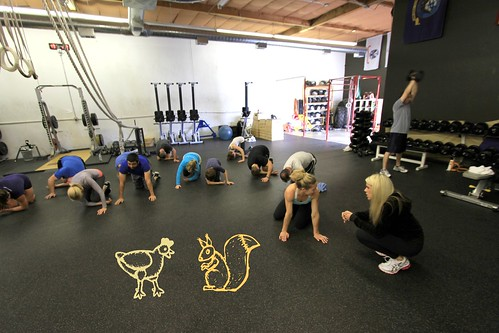 Mobility with Animals