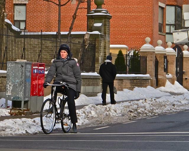 Canada Goose rides a bike.