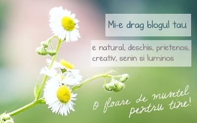 mi_e_drag_blogul_tau