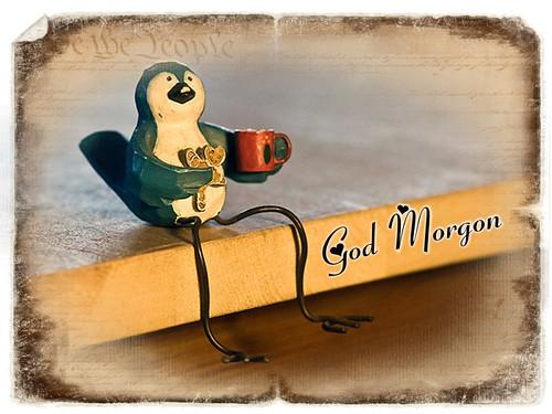 God Morgon (44 av 365)