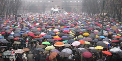 se non ora quando: coriandoli di ombrelli - foto di salvatore laforgia (MANIFESTIAMO) Tags: milano 13 febbraio manifestazione senonoraquando