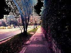 IMG_20170417_153759 (josespektrumphotography) Tags: phicodelica calle arbol cielo negro filtros foto dia huaweip7 josespektrumphotography